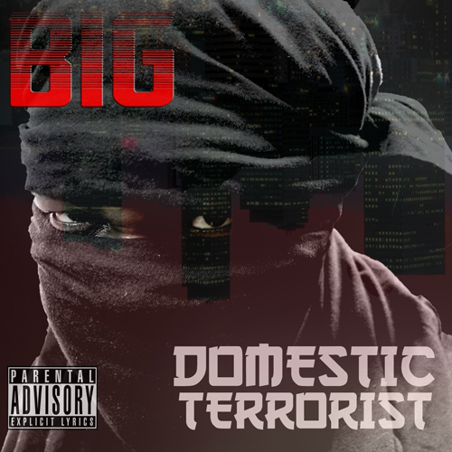 domestic terrorist cover Low-Res